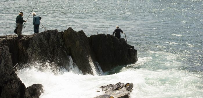 The Wild Atlantic on The Ring of Beara